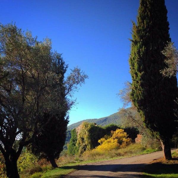 Villa i Sydfrankrig, lokal vej en lille gåtur fra Villa Romarine som du kan leje via KKP Provence