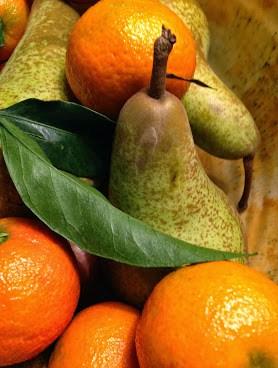 Villa i Sydfrankrig med frugt hele året rundt. Lej Villa Romarine i Provence.